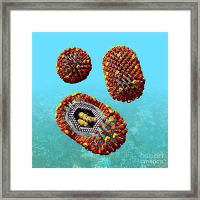 Influenza Virus Scene 1 Framed Print by Russell Kightley