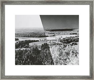 Infrared Comparison Framed Print by Omikron
