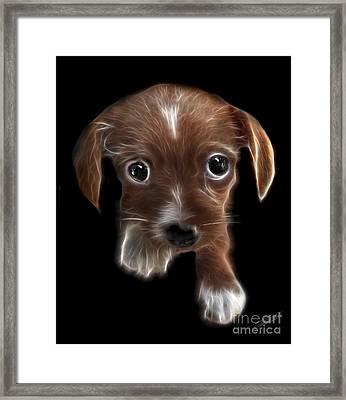 Innocent Loving Eyes Framed Print by Peter Piatt