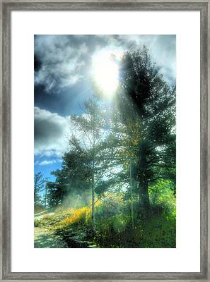 Inspirational Light Framed Print by Joe Myeress
