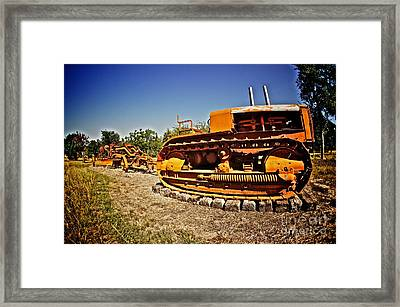 Into The Farm Framed Print by Will Cardoso