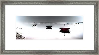 Into The Fog Framed Print by Betsy Knapp