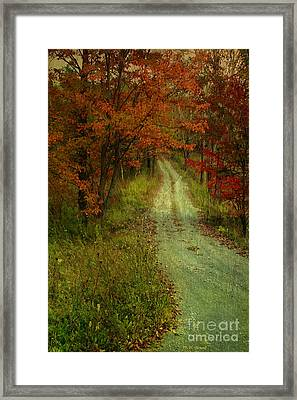 Into The Woods Of Fall Framed Print by Deborah Benoit