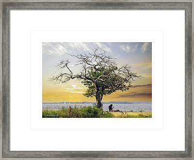 Introspective Framed Print by Brian Wallace