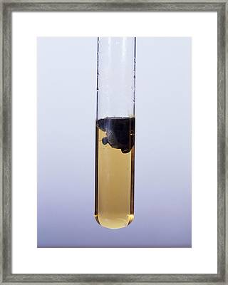 Iron (ii) Hydroxide Precipitate Framed Print by Andrew Lambert Photography