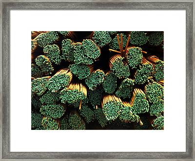 Iron Reinforcing Bars For High Rise Framed Print by Justin Guariglia