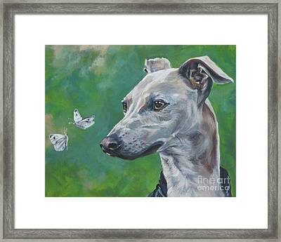 Italian Greyhound With Cabbage White Butterflies Framed Print by Lee Ann Shepard