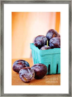 Italian Plums Framed Print by HD Connelly