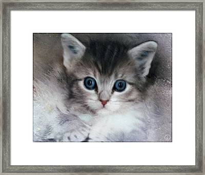 Its A Big World Out There Framed Print by Gun Legler