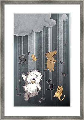 It's Raining Cats And Dogs Framed Print by Jim Howard