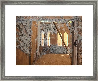 Ivy Walls Framed Print by Jane Linders
