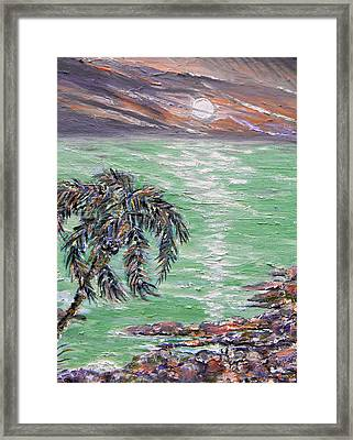 Jade Sea Framed Print by Christy Usilton