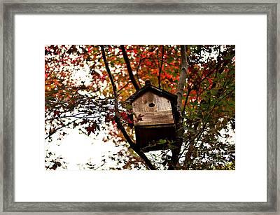 Japanese Garden In Autumn 5 Framed Print by Dean Harte