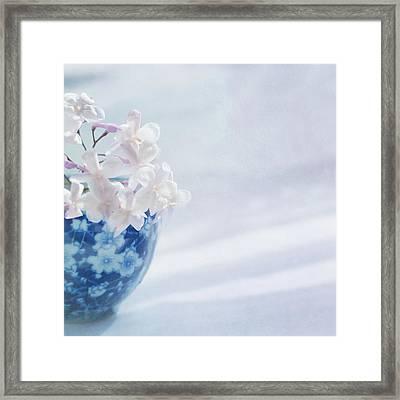 Jasmine Flowers In Pot Framed Print by Jill Ferry
