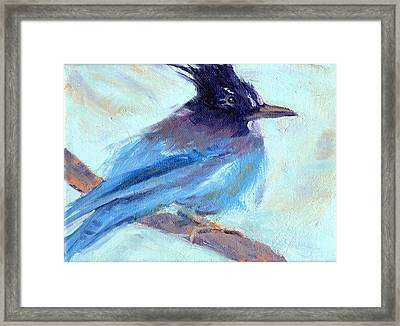 Jay To The Right Framed Print by Cheryl Whitehall