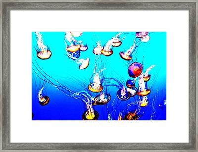 Jellyfish 2 Framed Print by Coconut Lime Design