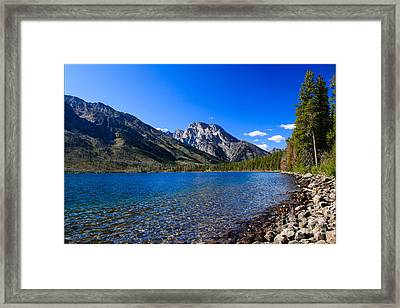 Jenny Lake Framed Print by Robert Bales