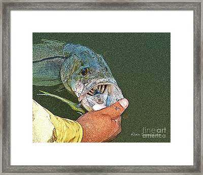 Jerkbait Snook Framed Print by Alex Suescun