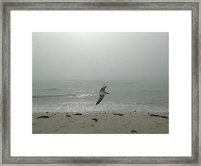 Jonathan About To Ascend Framed Print by Kerry McPhee