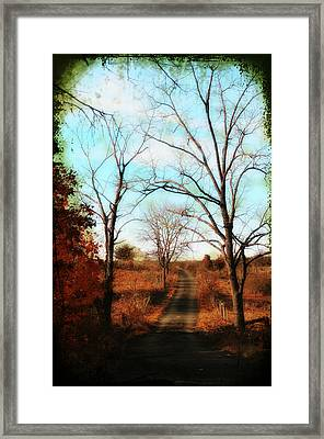 Journey To The Past Framed Print by Bill Cannon