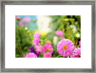 Joy Of Summer Time Framed Print by Jenny Rainbow