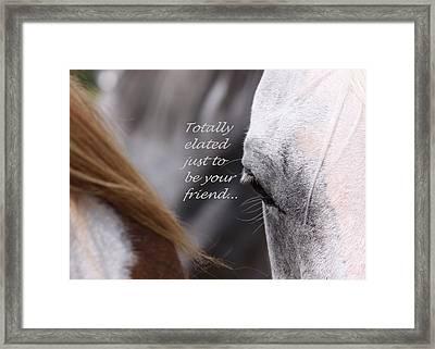 Just Friends Framed Print by Travis Truelove