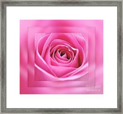 Just Pink Framed Print by Kaye Menner