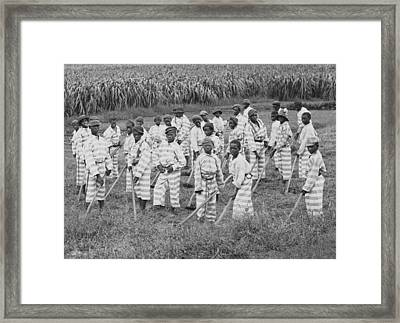 Juvenile Convicts At Work In The Fields Framed Print by Everett