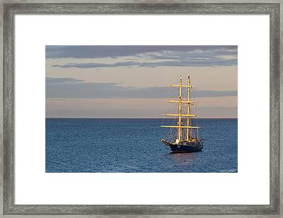 Kaisei Framed Print by Heidi Smith