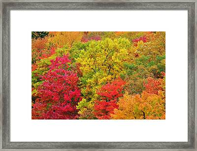 Kaleidoscope Framed Print by Jeff Moose