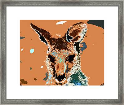 Kanga Roo Framed Print by David Lee Thompson