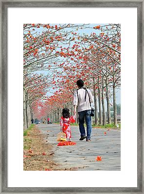 Kapok Road Framed Print by Frank Chen