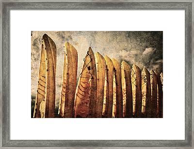 Kayaks Framed Print by Skip Nall