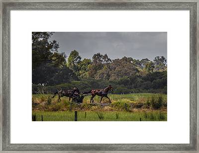 Keeping Pace Framed Print by Dave Kelly