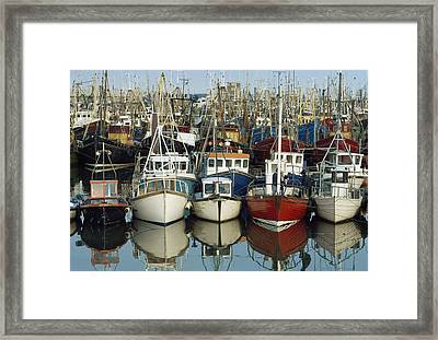Kilkeel, Co Down, Ireland Rows Of Boats Framed Print by The Irish Image Collection