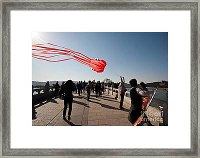 Kite Aloft Framed Print by Mike Reid