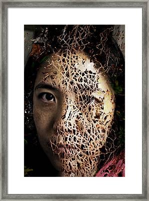 Knit Together Framed Print by Christopher Gaston