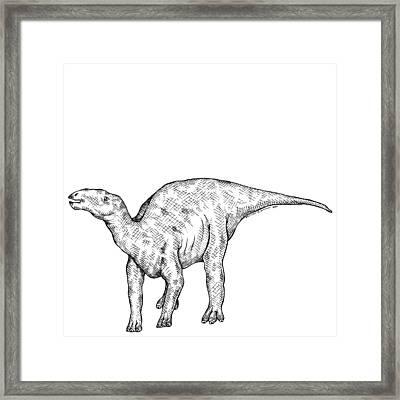 Kritosaurus - Dinosaur Framed Print by Karl Addison