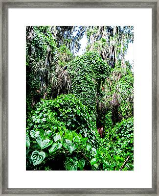 Kudzu Creature Framed Print by Christy Usilton