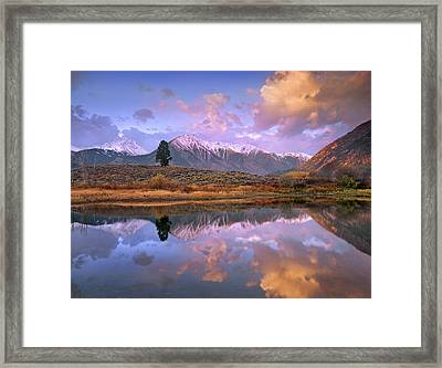 La Plata And Twin Peaks In The Sawatch Framed Print by Tim Fitzharris