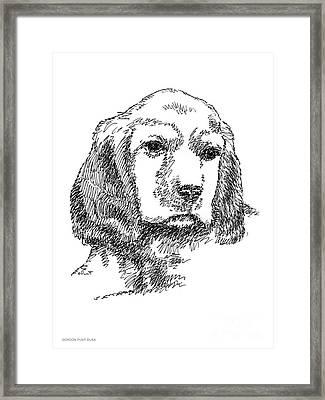 Labrador-portrait-drawing Framed Print by Gordon Punt