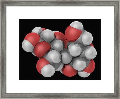 Lactose Molecule Framed Print by Laguna Design