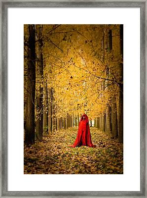 Lady In Red - 5 Framed Print by Okan YILMAZ