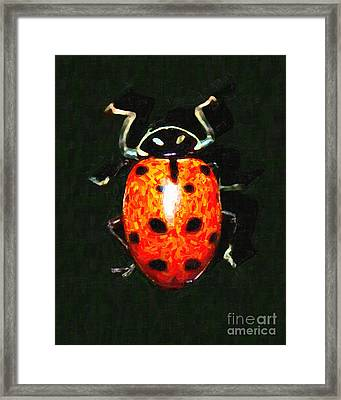 Ladybug Framed Print by Wingsdomain Art and Photography