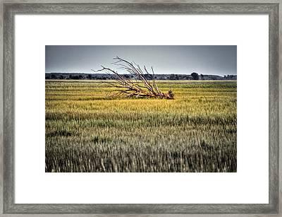 Laid To Rest Framed Print by Andrew Crispi