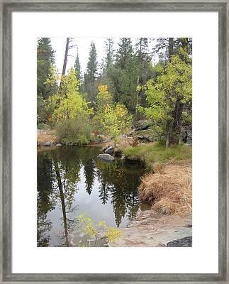 Lake In Sierras Framed Print by Naxart Studio