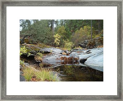 Lake In The Forest 1 Framed Print by Naxart Studio