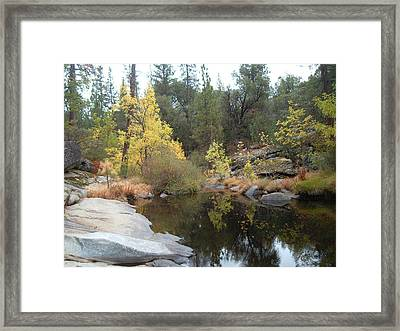 Lake In The Forest Framed Print by Naxart Studio