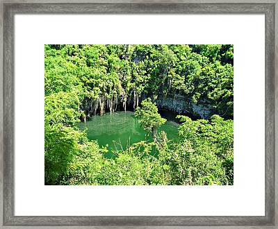 Lake In The Jungle Framed Print by Jenny Senra Pampin