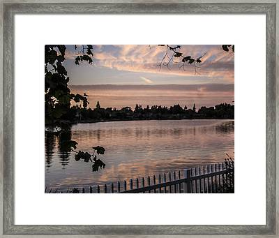 Lakehouse Backyard Framed Print by Dee  Savage